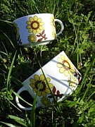 Coffee cup and Sunny garden