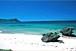 ジェットスキー海亀