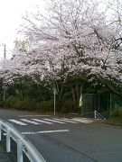 静岡県で介護の仕事してる人