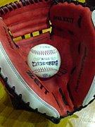 野球好きforセクマイ