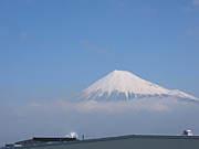 中田島でアルティメット