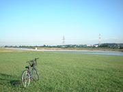 街乗り自転車部