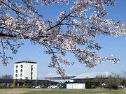 埼玉純真女子短期大学