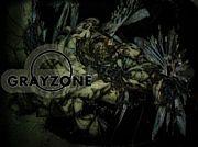 grayzone
