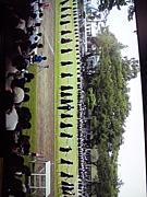 2011年MJ卒業生