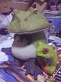 カエルの森工房が好き