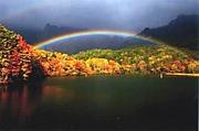 『虹の架け橋』
