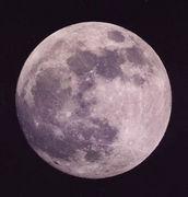 ★月が好き★