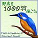 野鳥を1000羽描こう