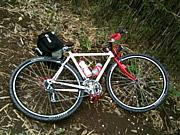 モンスタークロス(自転車)