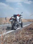 ヤマハ SRX250・400・600