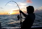 釣り情報交換所