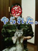鈴木TKO