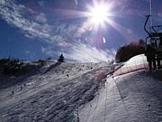 雪遊びサークル