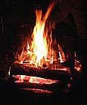焚き火ナイト