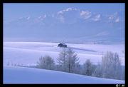 無音の雪景色が好き