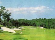 30代初心者のゴルフ倶楽部