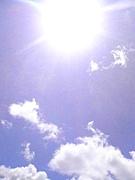 太陽のnioiが好き