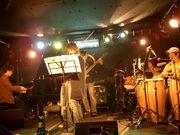 STELLA  -free style band-