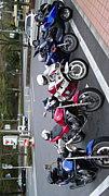 バイクサークル「凛駆」