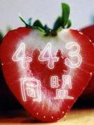 ☆443同盟国☆
