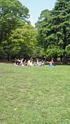 チャリティヨガ@代々木公園