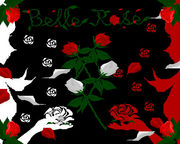 Belle Rose