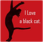 やっぱり黒ネコがスキ!