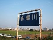 多摩川8・7
