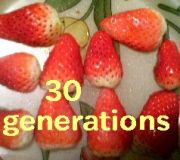 30generations