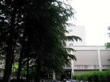 千葉大学 法経学部