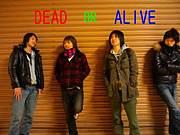 [公式]DEAD OR ALIVE
