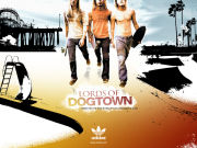 adidas LORDS OF DOGTOWN