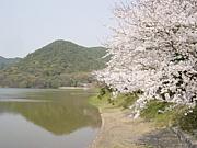 ☆嵯峨嵐山の隠れた名スポット☆