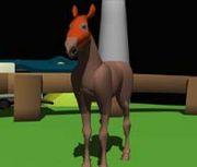 好きなお馬さんの話しをしよう