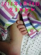 ☆★2011年6月24日生まれ☆★