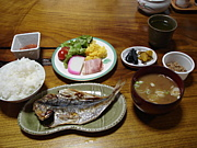 御蔵島村…民宿『とおや』が好き