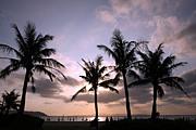 ビーチで三線片手にレゲエを聴く