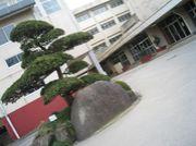 流山中央高校