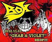 Punk Rock 【BOX】