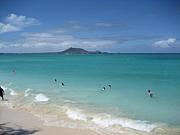 2008年海外友好セミナー ハワイ