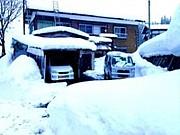 ついに解禁!!雪かきツアー☆