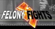 FelonyFights