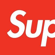 Supreme//aNYthing