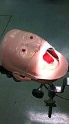 神歯CBT対策委員会