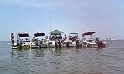 浜名湖の海賊