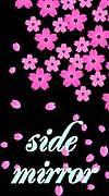 ゚*♪*。Side Mirror゚*♪*。