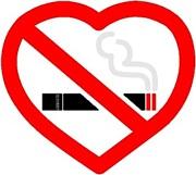 正統派:タバコ吸いません穏健派