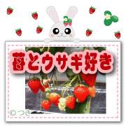 苺とウサギ好き♡