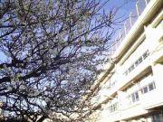 —田柄第三小学校—